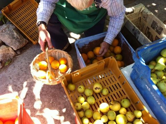 Farmer's Markets in Perth