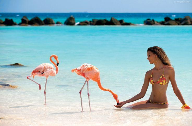 Kobieta, Flamingi