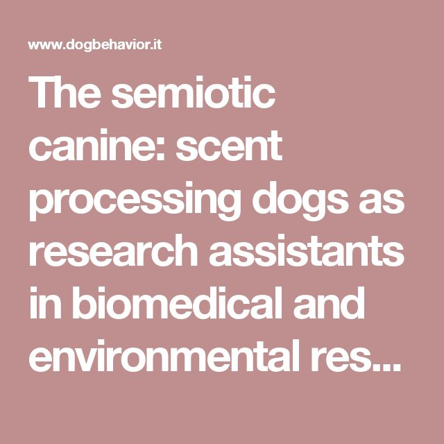 The semiotic canine: scent processing dogs as research assistants in biomedical and environmental research   Gadbois   DOG BEHAVIOR