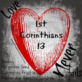 Spread the word, coming soon FREE: Tending Forgotten Seeds: Cultivating Fruit in Foster and Adopted Children - Love Part 1. Like Schumm Explosion on Facebook for your free copy, to be released Nov 2013.