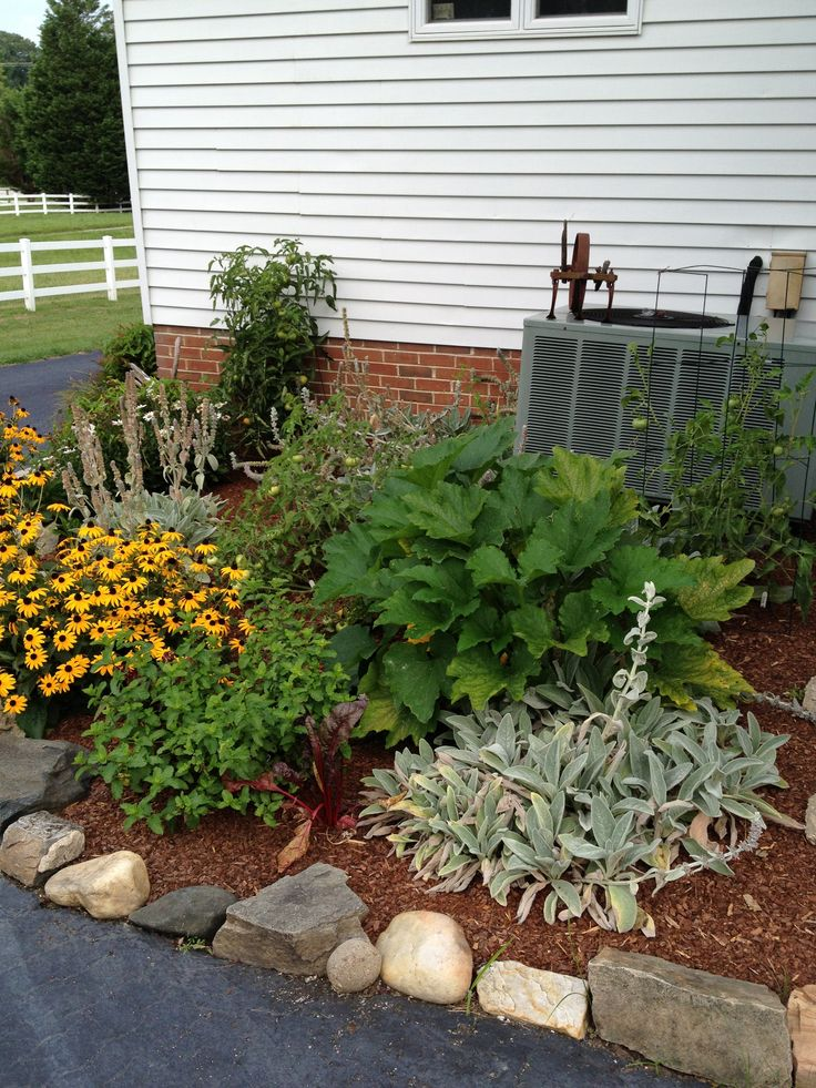 Corner garden- mixed- perennials, veggies, herbs.
