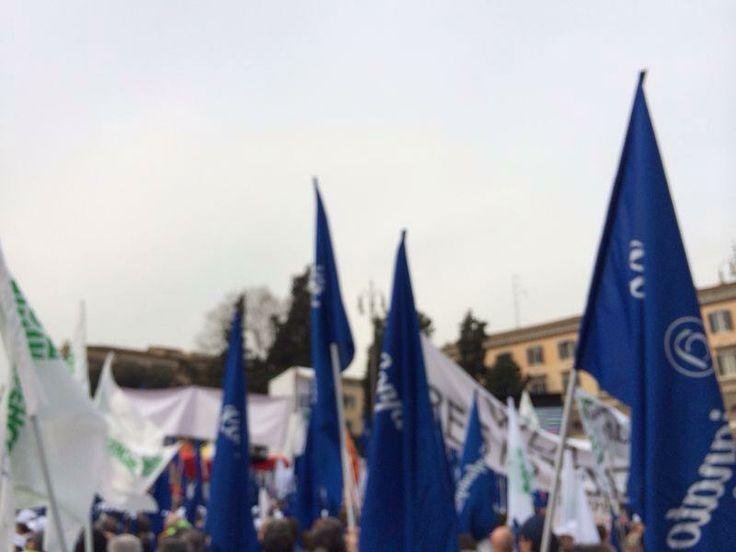 Mobilitazione promossa dalle cinque organizzazioni aderenti a Rete Imprese Italia: Casartigiani, Cna, Confartigianato, Confcommercio e Confesercenti.