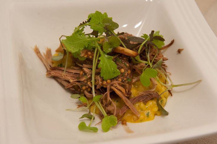 Koppert Mustard Cress topped off on braised beef