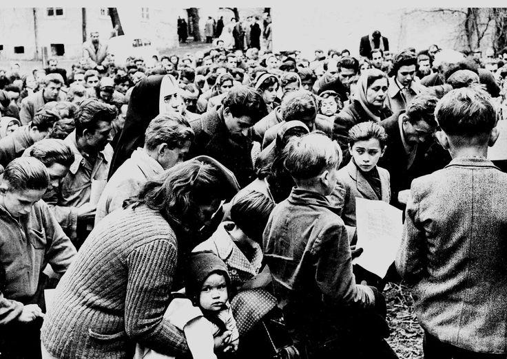 im Herbst 1956 flüchteten rund 180.000 Ungarn. Wien - Vienna 1956 Autumn - 180.000 refugees from Hungary