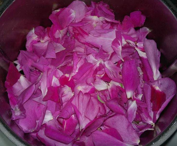 Przepis Konfitura z płatków róży przez Marty - Widok przepisu Dodatki
