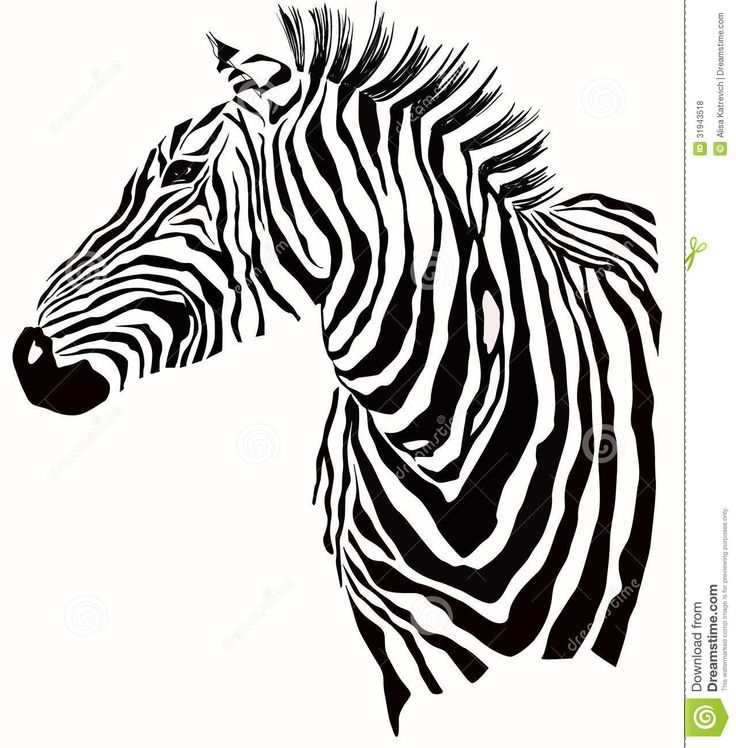 Free Image Silhouette Vector Illustration | Illustration Of Zebra Silhouette Royalty Free Stock Photos - Image ...