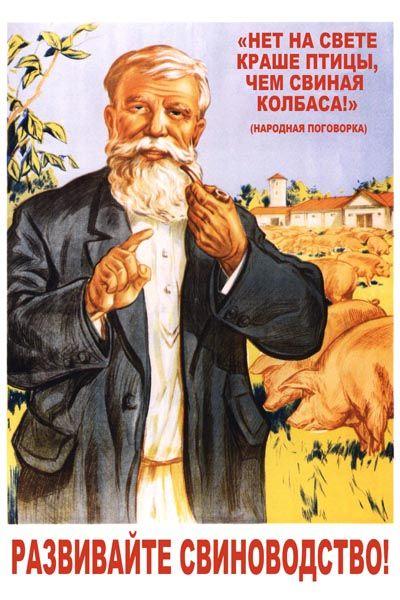 Постер Нет на свете краше птицы, чем свиная колбаса. Развивайте свиноводство…
