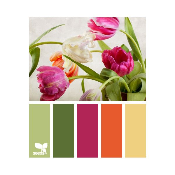 Design Seeds ❤ liked on Polyvore featuring design seeds, backgrounds, color palettes, colores and colours