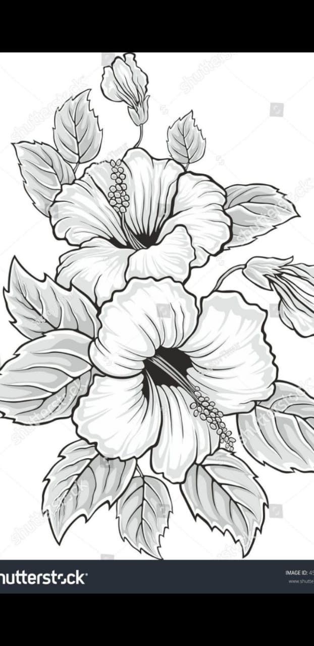 Pin von Alba auf Bäume und Blumen  Blumen zeichnen