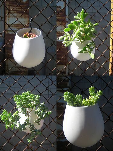 dress up a chain link fence.: Plants Container, Flower Container, Hanging Pot, Balconies Gardens, Fences Design, Flower Pot, Ikea Hacks, Chains Link Fences, Hanging Planters