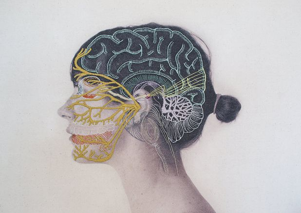 Anatomical embroidery by Juana Gómez   http://inagblog.com/2015/12/juana-gomez/   #embroidery #art