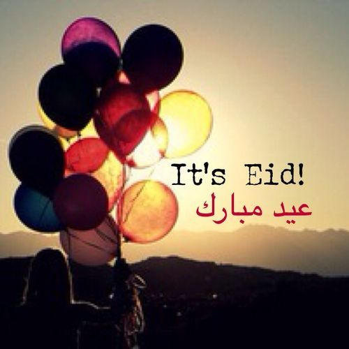 Eid mubark whatsapp DP Whatsapp Messages Status DP