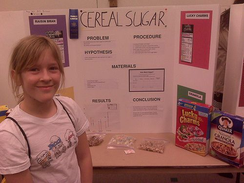 Science Fair 1st Place Winner, Huzzah! | ***Dave Does the Blog