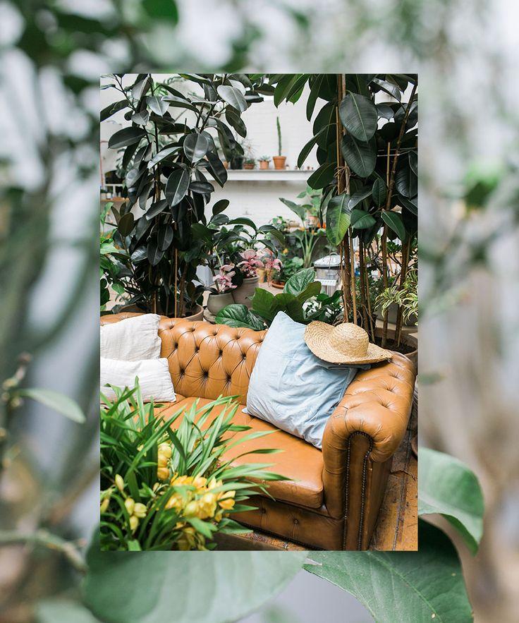 Ein Leben Mit Pflanzen U2013 Jin Ahn Von Conservatory Archives   Femtastics