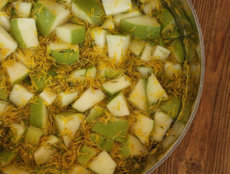 Traditional Scandinavian Dandelion Syrup Recipe: dandelion flowers, green apples, sugar, lemon juice