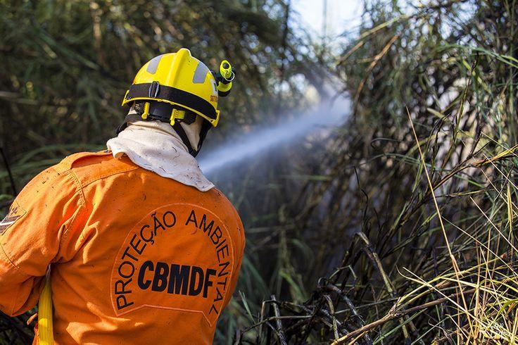 193Bombeiros: Incêndio Florestal - Área do Riacho Fundo | 15 de ...