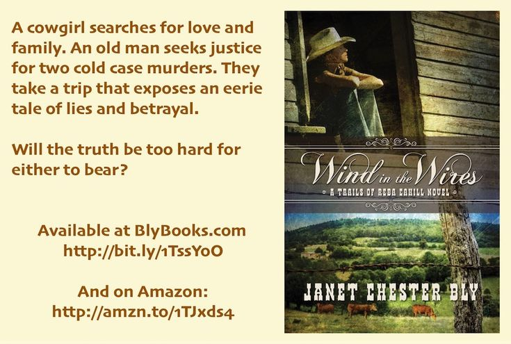 60 best can contemporay fiction books images on pinterest fiction wind in the wires by janet chester bly book 1 trails of reba cahill fandeluxe Image collections