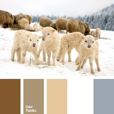 Delicate shades of beige will blend beautifully with neutral white and gray. This combination will be very useful when decorating a bedroom or an entire ap.