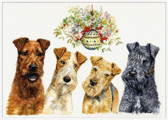 Pin On Terriers