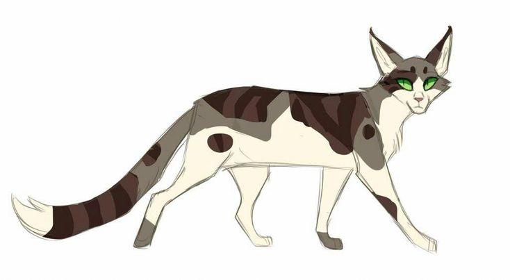 Cats Craigslist Catsthirdeyelid Warriorcats Warrior Cats Fan Art Warrior Cat Drawings Warrior Cats Series