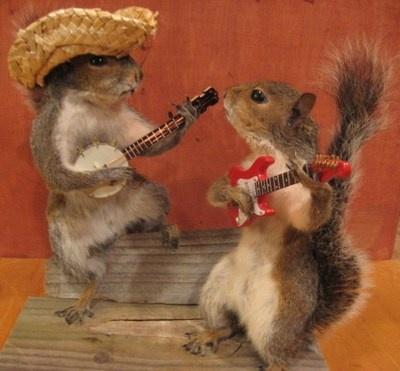Mátame, camión! (El Tópic de la Taxidermia Chunga) - Página 3 62ccaa3402999fce15971428ec7e97b4--straw-hats-banjos