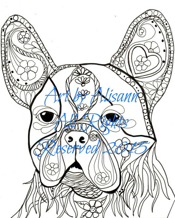 Boston Bull Terrier  Digital  Download  Coloring by AbeesArtStudio