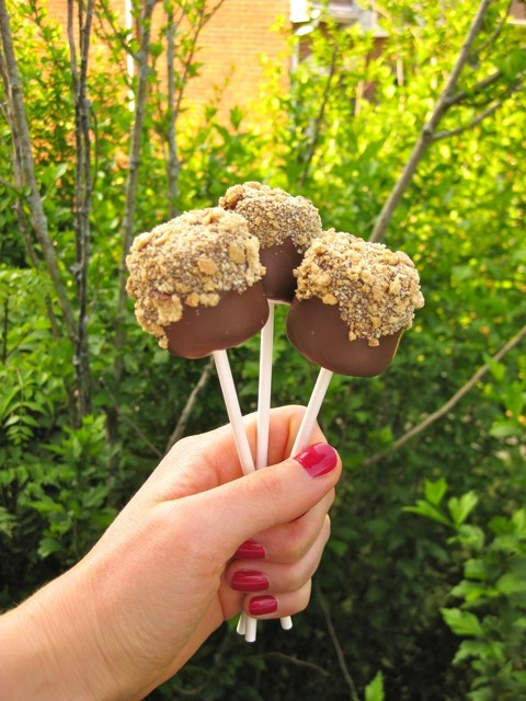 chocolate covered marshmallows with graham cracker crumbs. Had this yesterday!