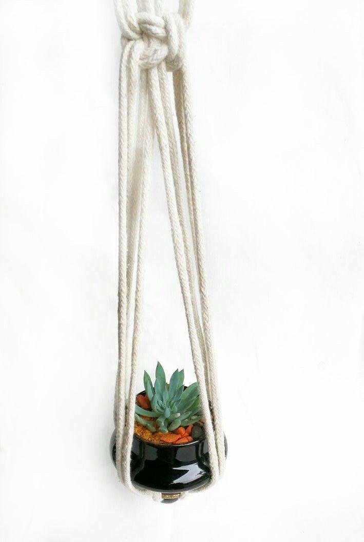 Hermosa maceta en vidrio colgante con suculenta. Precio: 15.000 www.plantadas.co