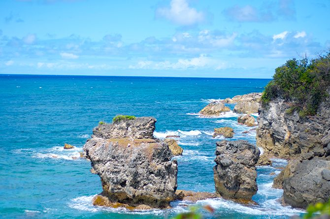 Explore The Beauty Of Caribbean: 48 Best Explore Barbados: Walk, Run, Hike & Bike Images On