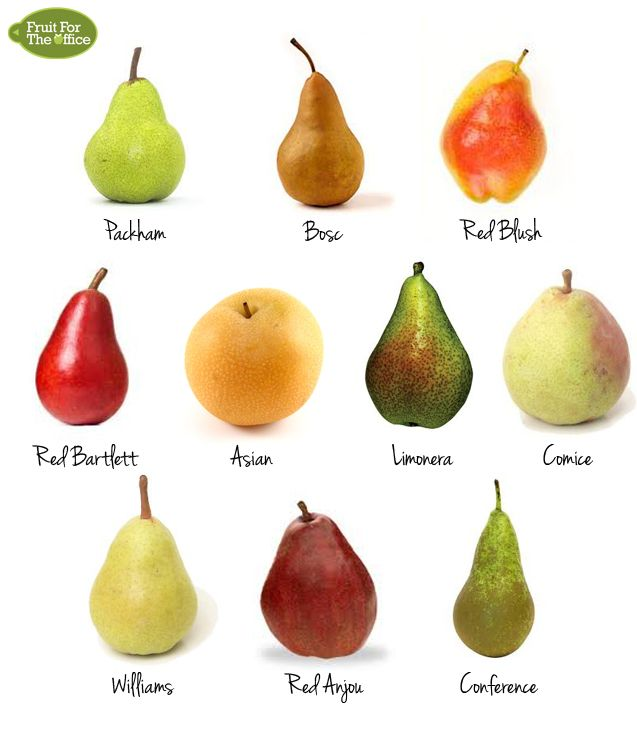 10+Types+of+Pear (637×733)