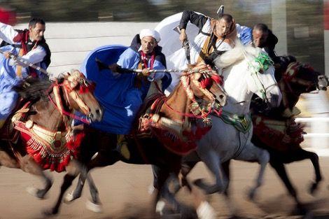 الجائزة الكبرى للملك محمد السادس للتبوريدة تحتفي بتراث المغاربة