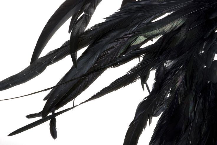 Feather, detail Tillskärarakademin i Göteborg