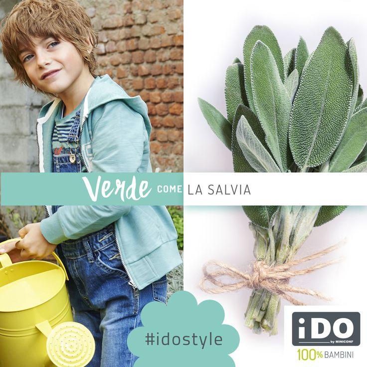 il verde è il colore della Salvia #SpringSummer #idokidswear #fashionkids #kidsfashion #PE16 #boy