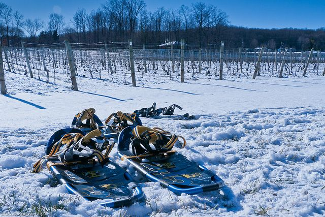 Wine and Snow Shoeing. Sign me up!