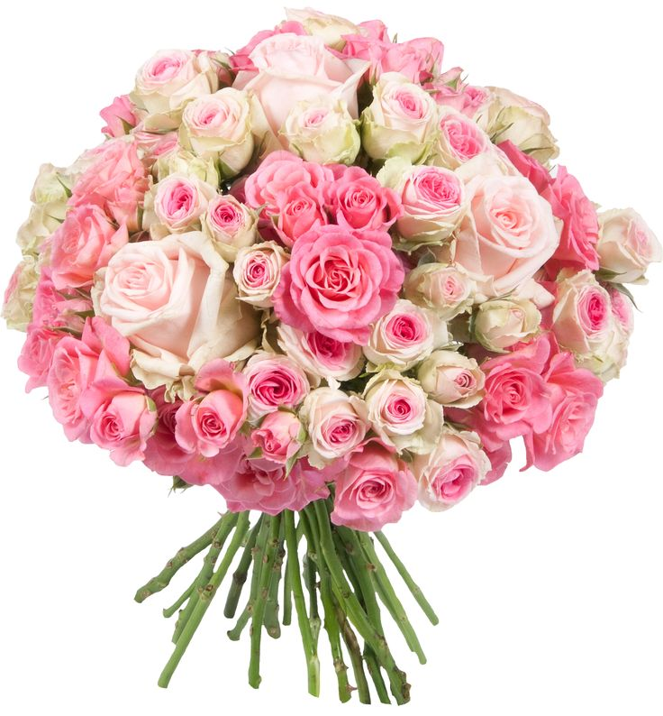 1000 images about bouquets pour la saint valentin on for Bouquet saint valentin