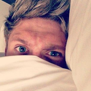 This is utter perfection!  (Community Post: 21 Times Niall Horan Proved He Was Boyfriend Material)