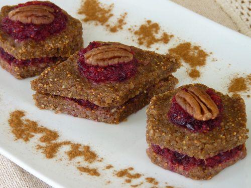 8 best tonya zavasta images on pinterest raw food blog raw food cranberry pecan bites beautiful on raw raw food recipesraw food blograw forumfinder Image collections