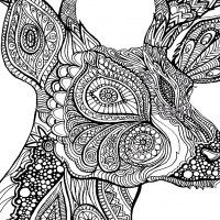 http://www.coloriages-adultes.com/animaux/?image=animaux__coloriage-difficile-cerf-zoom__1