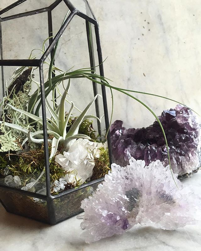 In love with these geodesic terrariums and that rose amethyst. ☺️✨ Here until 7pm! #terrarium #amethyst #roseamethyst #airplants #curiosityshop #shopwoo