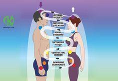 Когда мужчины и женщины встречаются, то становятся соединенными «энергетическими» сосудами. И, по закону сообщающихся сосудов - между ними начинается энергообмен. Рассмотрим, как происходит идеальный
