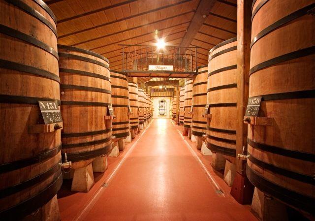 Acompañanos a recorrer un viaje Cruzando las Fronteras de Castilla y León y visitar Bodegas Muga en Haro (La Rioja). El viaje que debe hacer todo Winelover