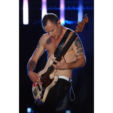 Bilete Concert Red Hot Chili Peppers la Milano