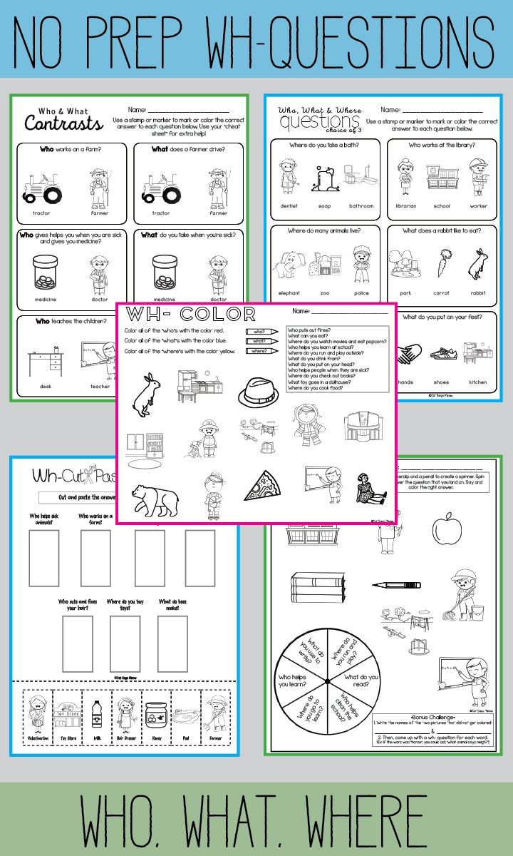 No Prep Wh- Questions. Fun Who, What and Where worksheets!