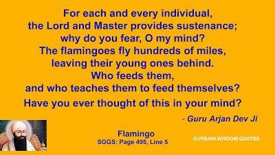 GURBANI.WISDOM.QUOTES (SGGS): Quote 134 - Guru Arjan Dev Ji (Flamingo)