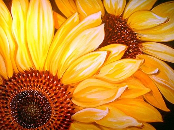 460 best images about sunflower paintings on Pinterest ...