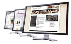 Bespoke Website Design Bristol