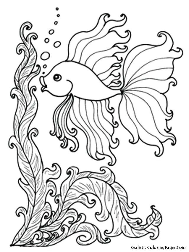 27 Inspiration Image Of Underwater Coloring Pages Fish Coloring