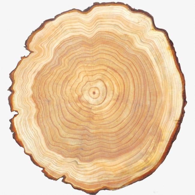 если переесть, спил дерева в картинках родилась планете линфея