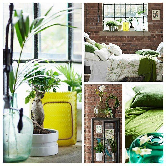 Uansett hvordan sommeren er ute, kan du ha sommer inne med botaniske mønstre, naturmaterialer og grønne planter i fleng. #IKEAinspirasjon #STRANDSKRYPA #sengesett #FABRIKØR #vitrineskap #SOCKER #blomsterpotte #sommer #soverom #ute #inne