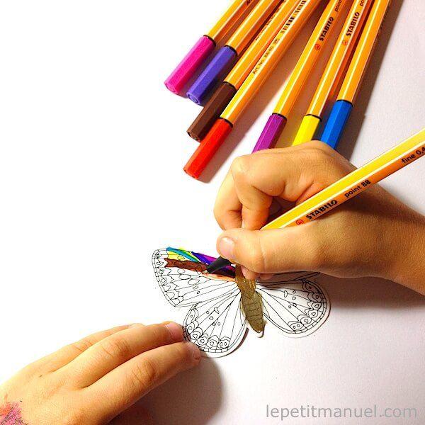 Papillons à colorier @ Le Petit Manuel